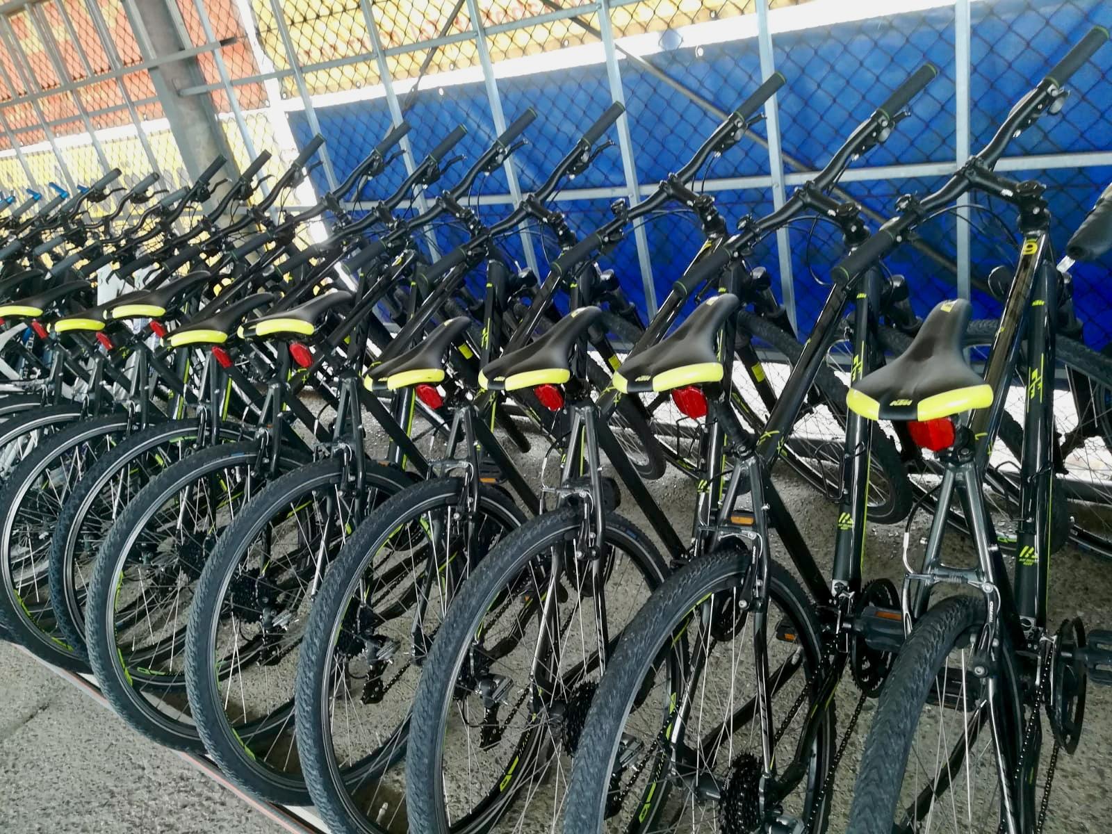 Bucsis Fahrräder